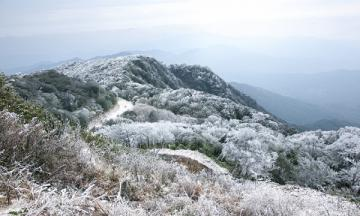 Những địa điểm ngắm tuyết rơi đẹp nhất tại Việt Nam